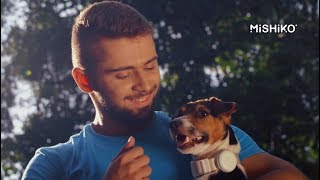Рекламный ролик для Mishiko. Умные ошейники для собак   РосВидео