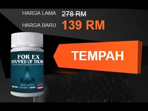 forex---hammer-of-thor-malaysia