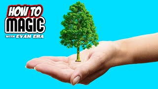 5 Magic TREE Tricks Revealed! (#TeamTrees)