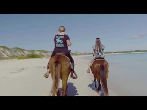 Activities in Anguilla  | Anguilla on Horseback with Tonya Richardson