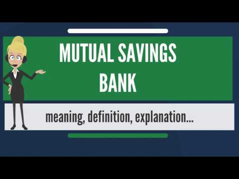What is MUTUAL SAVINGS BANK? What does MUTUAL SAVINGS BANK mean? MUTUAL SAVINGS BANK meaning