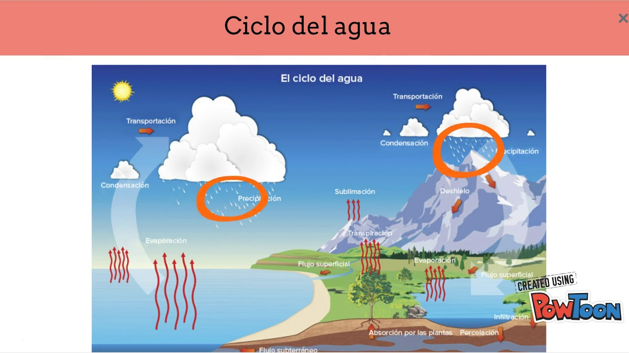 descargar videos sobre el ciclo del agua