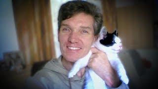 Кошачий массаж  Массаж котику  Cat Massage  Массаж коту