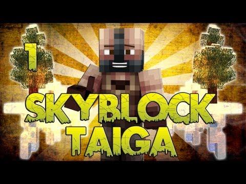 ▣ Minecraft Oculus Rift ▣ Skyblock Taiga