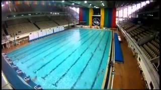 Выпуск Галилео.  Кто быстрее плавает и почему?