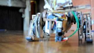 Modular Open Source robot Rackl