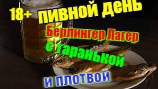 Пью ПИВО разливное с ТАРАНЬКОЙ и ПЛОТВОЙ...