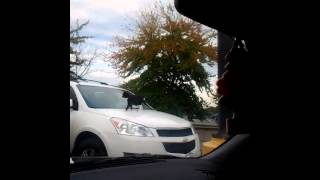 Walmart cat pees on someone's car