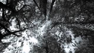 Sabbatical Goat - The Trees of Darkness / The Black Dance