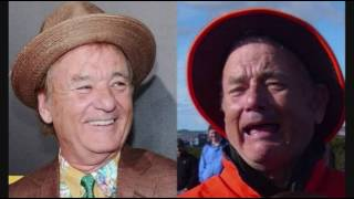 Celebrity Look-Alikes: Bill Murray Looks Like Tom Hanks