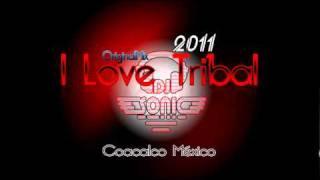 DJ Sonic - I Love Tribal Original Mix 2011