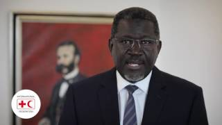 World Humanitarian Day: video message by IFRC Secretary General