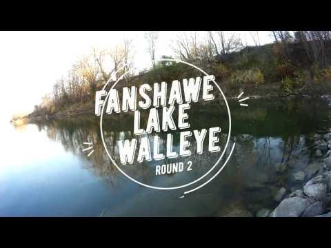 fanshawe walleye round 2. London, Ontario