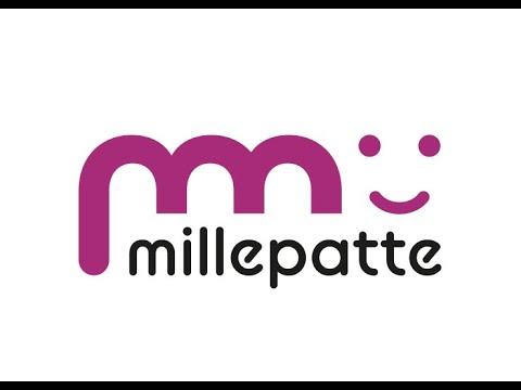 Présentation du réseau Millepatte