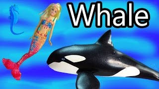 Barbie Mermaid Saves A Killer Whale Orca Water Ocean Friends Doll Video Toys Playing Cookieswirlc