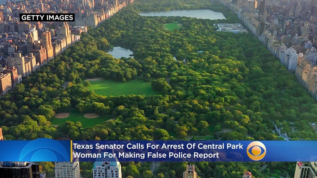 Texas Senator Calls For Arrest Of Central Park 'Karen' For Making False Report