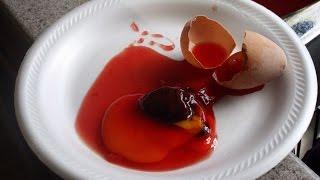как сделать гомункула без семя и крови
