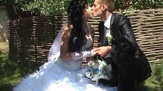 Свадьба Катя и Антон