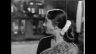 Tera mera pyaar amar- An Instrumental Tribute By Prof. Qasim Zaidi to Shankar Jaikishan
