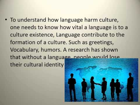 The Effect Of Globalization On Language And Culture