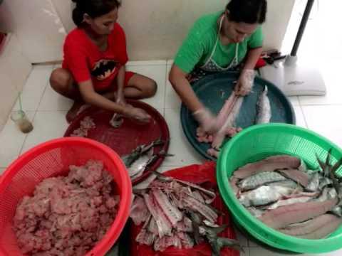Unduh 46 Gambar Ikan Tenggiri Giling Terbaru