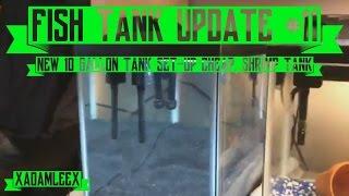 fish aquarium update 11 new 10 gallon set up cheap shrimp tank d