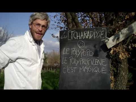 TCHARADISSE / Lou film