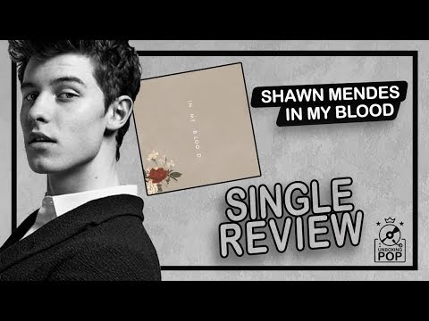 Shawn Mendes Song Download In My Blood