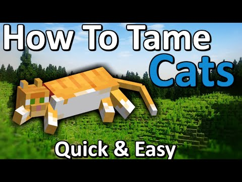 how-to-tame-a-cat-minecraft-|-quick-&-easy!