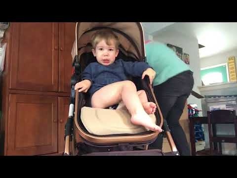 Review Of Cynebaby Stroller And How To Put It Together