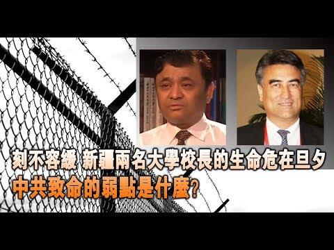 拯救维吾尔校长 极权国家为何要统一思想?
