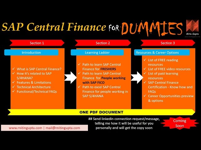 SAP Central Finance for Dummies