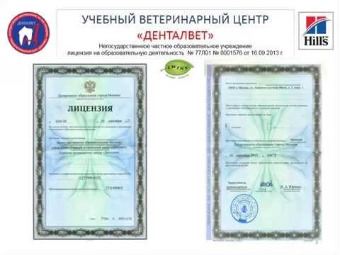 лицензирование деятельности службы знакомств