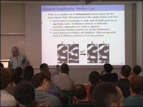 Ken Miller (Columbia): Non-normal dynamics and V1