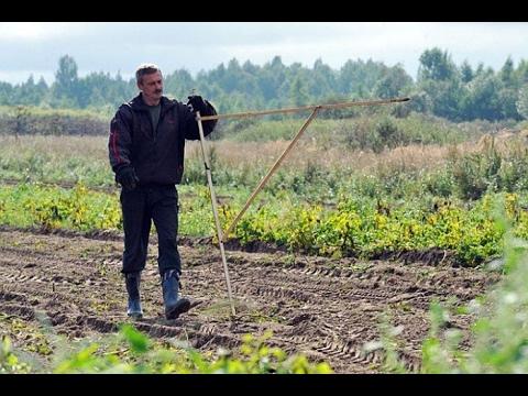 """Вся правда о проекте """"Дальний Восток"""" каждому по гектару!"""