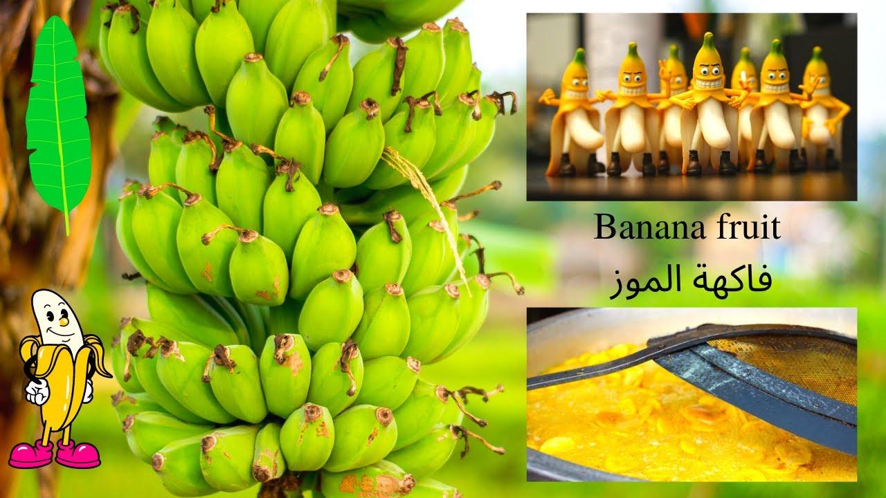The Banana Fruit فاكهة الموز Banana Fruit Fruit Banana
