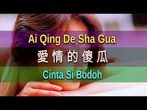 雷婷 Lei Ting - 愛情的傻瓜 Ai Qing De Sha Gua (Cinta Si Bodoh)