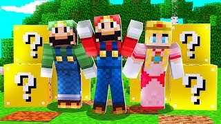 MINECRAFT SUPER SMASH BROTHERS LUCKY BLOCK BATTLE - MINECRAFT LUCKY BLOCK MOD