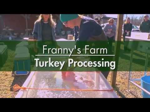 Turkey Processing with Franny & Meagan
