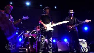 Los Lobos - I Got Loaded  (Live in Sydney) | Moshcam