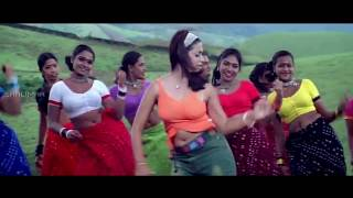 Download Yelo Yelo  Song || Shivamani Telugu Movie || Nagarjuna, Rakshita MP3 song and Music Video