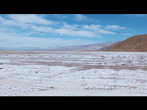 Science Today: Life on the Salt Flats | California Academy of Sciences