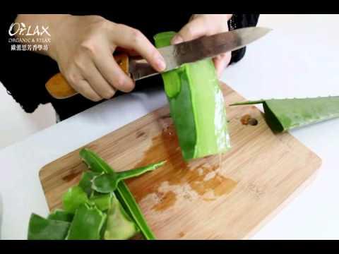 [DIY] 自製天然檸檬環保酵素教學,氣味清香,用途廣泛 - G. T. …_插圖
