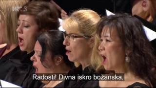 Ludwig Van Beethoven 9. simfonija Oda radosti.mp3