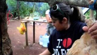 renata ahv
