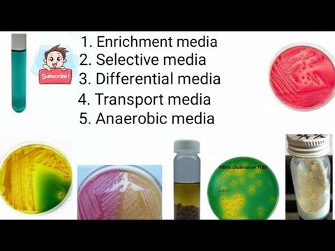 Enrichment media, Selective media, Differential media, Transport media, Anaerobic media part -4
