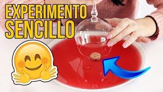 EL INCREÍBLE EXPERIMENTO SENCILLO QUE PUEDES HACER EN CASA - Experimentos para niños thumbnail