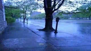 Kentucky Rain - Elvis Presley