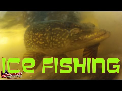 ICE FISHING BIG PIKE....CRANBERRY LAKE NY FISHING DERBY.. FEATURED CHANNEL...HEITH GAGNON