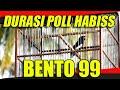 Durasi Poll Bos Que Kacer Bento  Juara   Mp3 - Mp4 Download